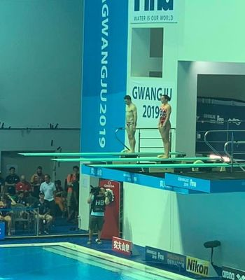 Irish Divers Sign Off With Record; Swimmers Seek Olympic Qualifications